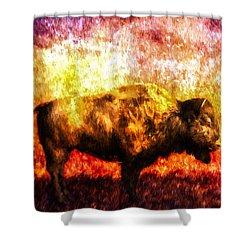 Buffalo Shower Curtain by Bob Orsillo