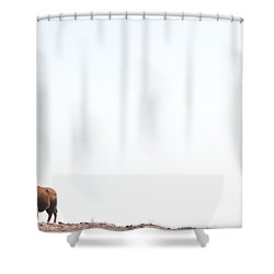 Buffalo Country Shower Curtain
