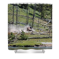 Buffalo Dust Bath Shower Curtain