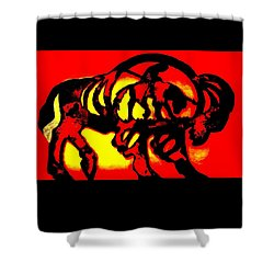 Shower Curtain featuring the photograph Buffalo Sun Set by Larry Campbell