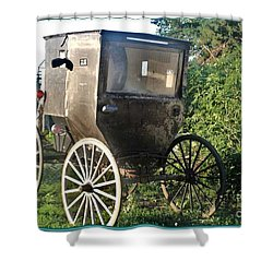 Buggy Shower Curtain by PainterArtist FIN