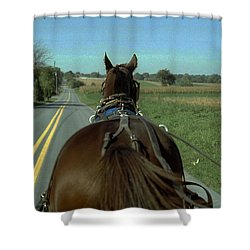 Buggy Ride  Shower Curtain by Joyce  Wasser