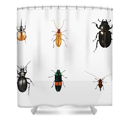 Bugs Shower Curtain by Ele Grafton