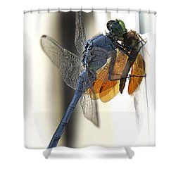 Bugzilla Shower Curtain