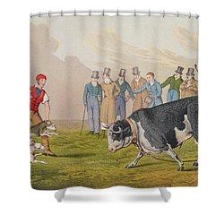 Bull Baiting Shower Curtain by Henry Thomas Alken