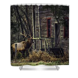 Bull Elk By The Old Boxley Mill Shower Curtain by Michael Dougherty