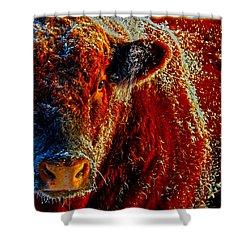 Bull On Ice Shower Curtain