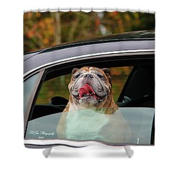 Bulldog Bliss Shower Curtain
