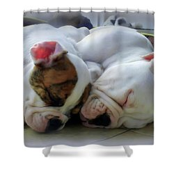 Bulldog Bliss Shower Curtain by Karen Wiles