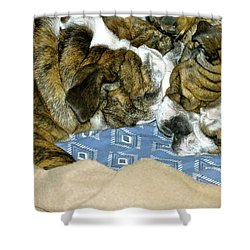 Bulldog Love Forever  Shower Curtain by Lehua Pekelo-Stearns