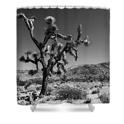 Bullet The Blue Sky - Joshua Tree N.p Shower Curtain by Henk Meijer Photography