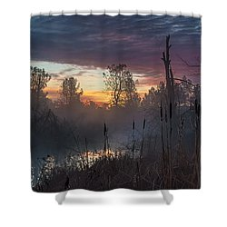 Bulrush Sunrise Full Scene Shower Curtain
