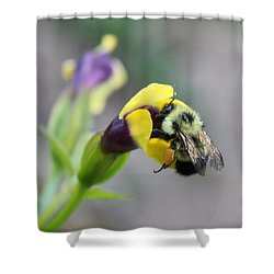 Shower Curtain featuring the photograph Bumble Bee Making A Wish by Penny Meyers