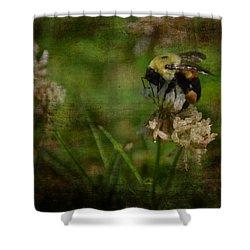 Bumble Bee Serenade Nbr 3 Shower Curtain