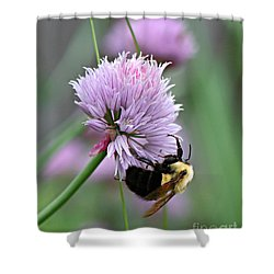Shower Curtain featuring the photograph Bumblebee On Clover by Barbara McMahon