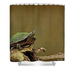 Bump On A Log Shower Curtain