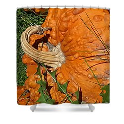 Shower Curtain featuring the photograph Bumpy And Beautiful by Caryl J Bohn