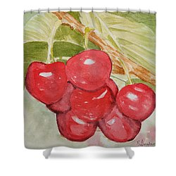 Bunch Of Red Cherries Shower Curtain