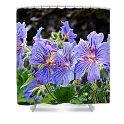 Bunches Shower Curtain by Clare Bevan