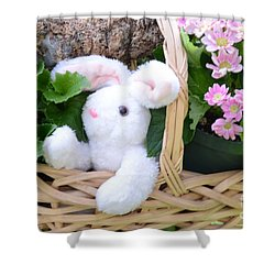 Bunny In A Basket Shower Curtain by Kathleen Struckle
