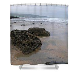 Buren Gold Beach Shower Curtain
