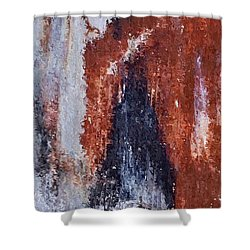 Shower Curtain featuring the digital art Burgundy And Black by Heidi Smith
