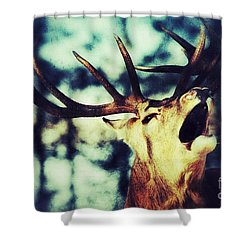 Burling Deer Shower Curtain by Nick  Biemans