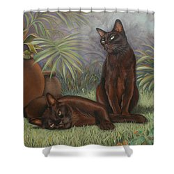 Shower Curtain featuring the painting Burmese Beauty by Cynthia House