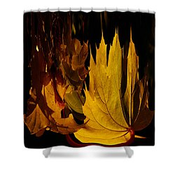 Burning Fall Shower Curtain by Jouko Lehto