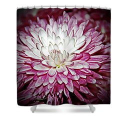 Burning Pink Shower Curtain by Aimee L Maher Photography and Art Visit ALMGallerydotcom