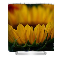 Burning Ring Of Fire Shower Curtain by John S
