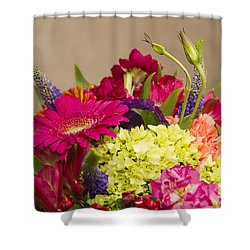 Burns 7376 Shower Curtain