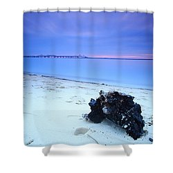 Burnt Driftwood Sunset Shower Curtain