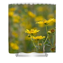 Shower Curtain featuring the photograph Burrmarigold by Paul Rebmann