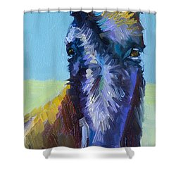 Burro Stare Shower Curtain