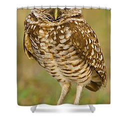 Burrowing Owl Shower Curtain by Jerry Fornarotto