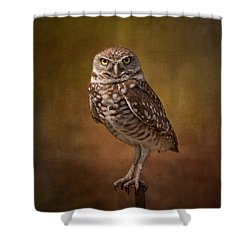 Burrowing Owl Portrait Shower Curtain by Kim Hojnacki