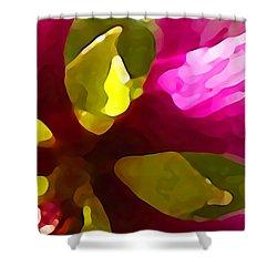 Burst Of Spring Shower Curtain by Amy Vangsgard