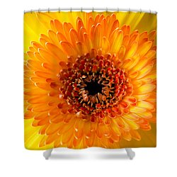 Burst Of Sunshine Shower Curtain by Shelby  Young