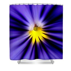 Bursting With Blue Pansy Shower Curtain by Kelly Nowak