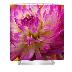 Shower Curtain featuring the photograph Bursting With Color by John S