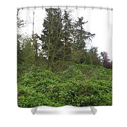 Bus Stop Greenbelt Shower Curtain