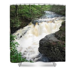 Shower Curtain featuring the photograph Bushkill Rapids by Richard Reeve
