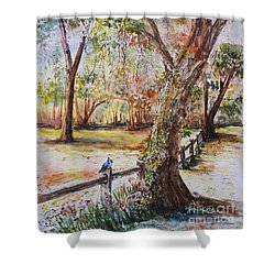 Bushnell Morning Shower Curtain
