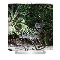 Bust In A Garden With Staghorn Fern Shower Curtain by Patricia Greer
