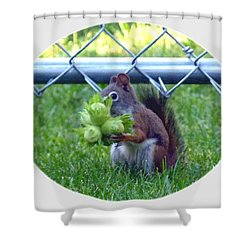 Busted Shower Curtain by Will Borden