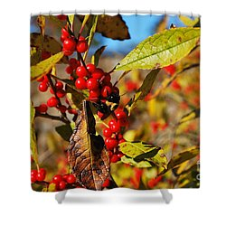 Shower Curtain featuring the photograph Busy As A Bee by Bob Sample