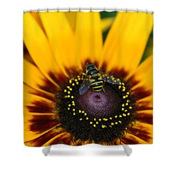 Shower Curtain featuring the photograph Busy Bee by Denyse Duhaime