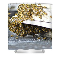 Busy Bees Shower Curtain by Laura Forde