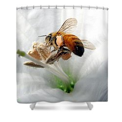 Shower Curtain featuring the photograph Busy by Joyce Dickens